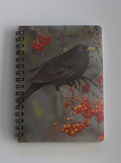 Blackbird 3D Notebook